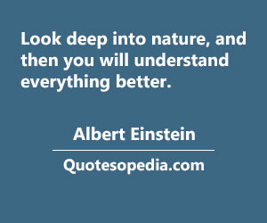 Quotesopedia.com